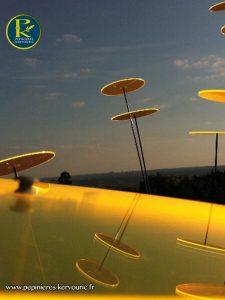 Disque solaire